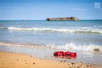 IMG_0491-Anibas-Photography-Gunner-Bill's-return-to-Arromanches-D-Day-Anniversary