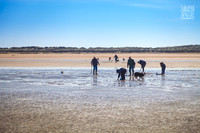 Anibas-Photography-Utah-Beach-at-low-tide-9742