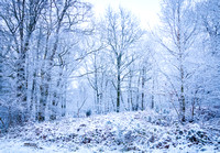 Anibas-Photography-photos-Normandie-sous-la-neige-5648