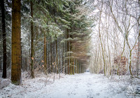 Anibas-Photography-photos-Normandie-sous-la-neige-5732