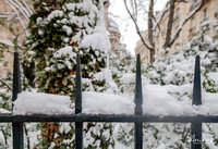 IMG_2847-Anibas-Photography-Paris-in-the-snow-2018