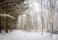 Anibas-Photography-photos-Normandie-sous-la-neige-5727